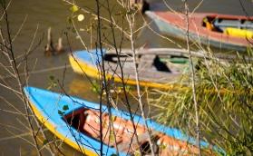 Fishing Boats, Argentina